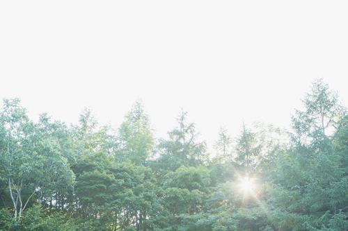 日高の風景:自然